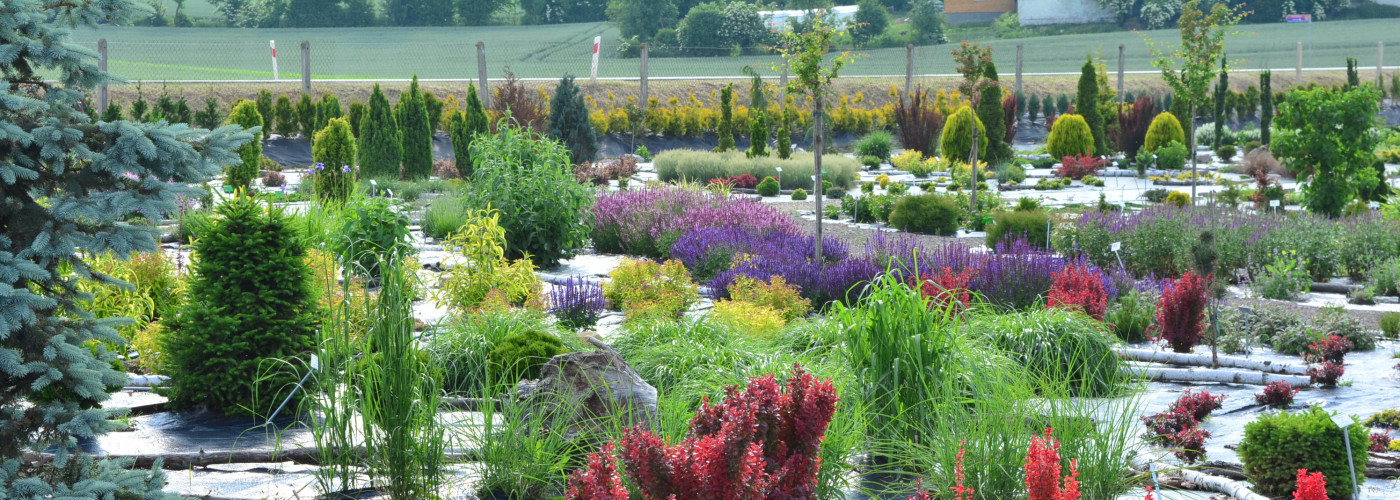 Świętokrzyski Ogród